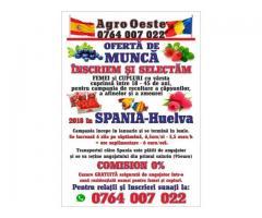 Oferta de munca in Spania 2018 (ZONA HUELVA) Nu se plateste comision!!!