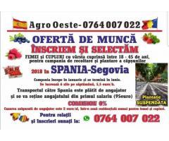 Locuri de munca in SPANIA Segovia - salariu cuprins intre 1200-1400 EURO