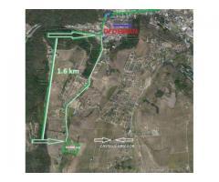 Teren Iasi Manta Rosie Fostul Dedeman  2 ha parcelabil  Constructii Rezidential | anunturi gratuite