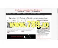 Optimizare SEO Timisoara administrare promovare | anunturi gratuite