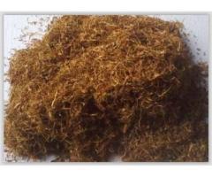 Vand tutun Burley frunze | anunturi gratuite